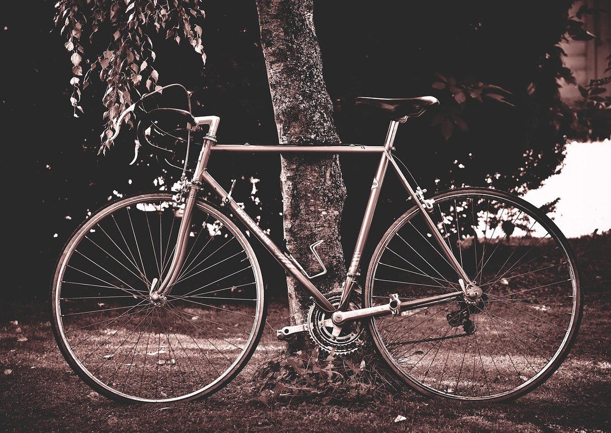 Škola vožnje bicikla